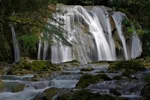 Destiny Caribbean Tours - Reserva Cientifica Ebano Verde