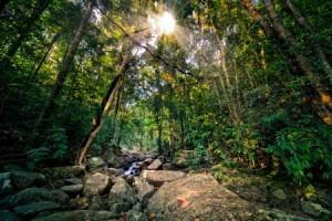 Destiny Caribbean Tours - parque nacional Armando Bermudez