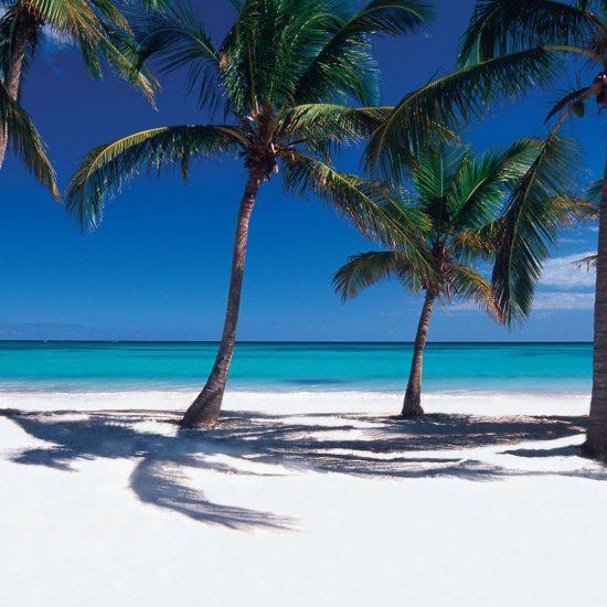Excursiones a Punta Cana